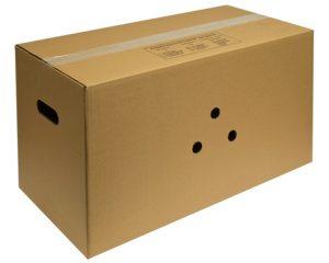 karton-151-360-eier