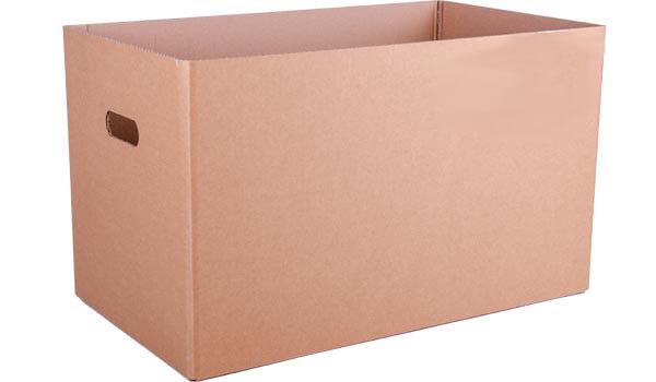 20er-Eierbox-Karton